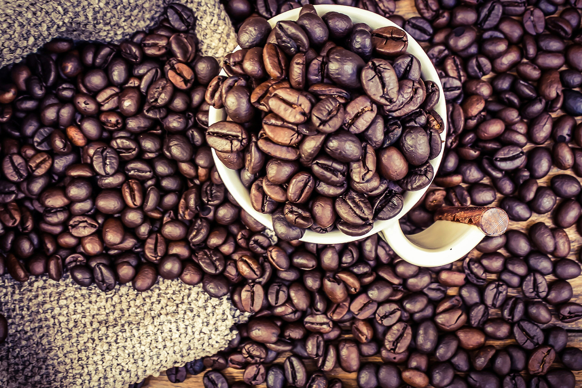 Explore the Different Varieties of Coffee Beans